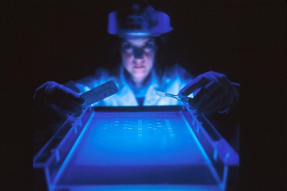 La enfermedad de Lyme y los tratamientos que van más allá de la ficción